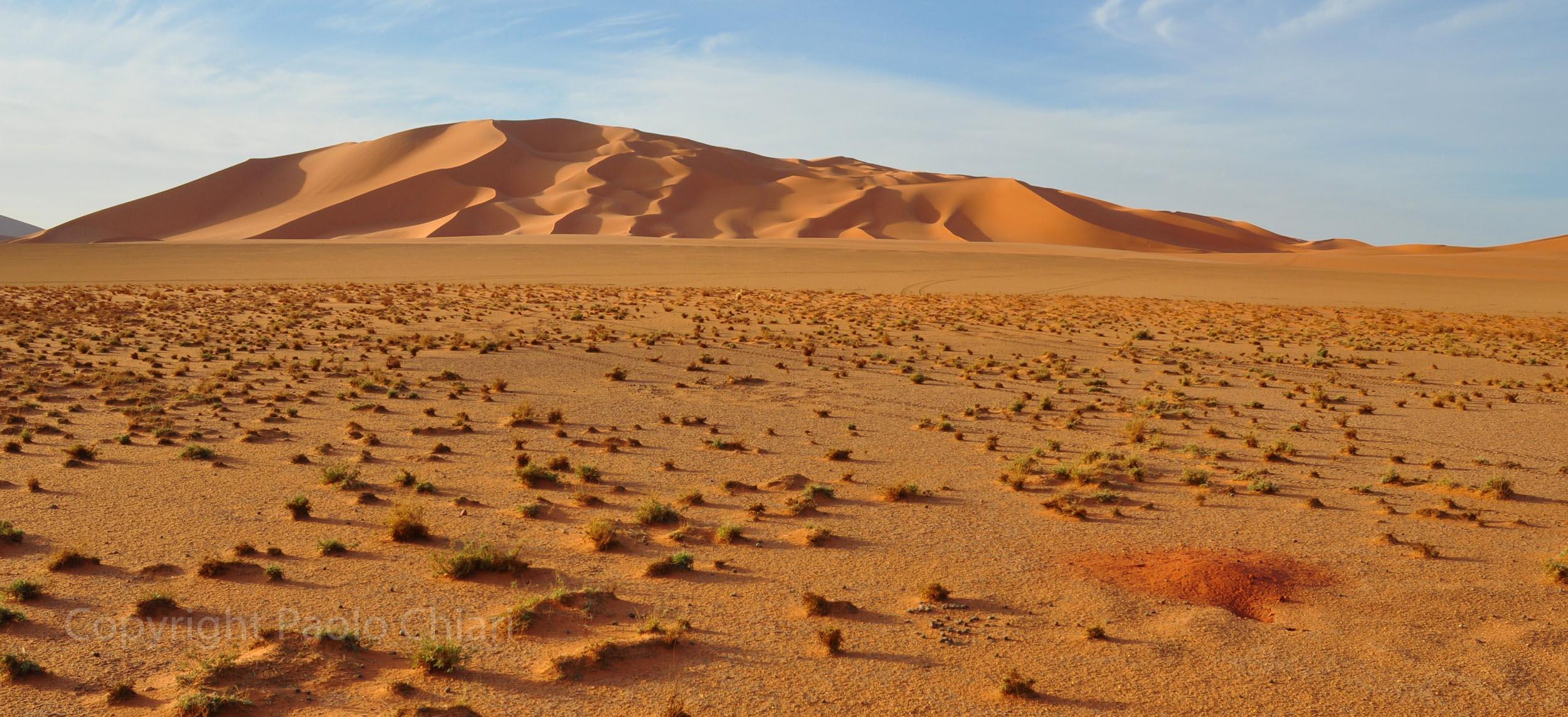 libia2010a_1801