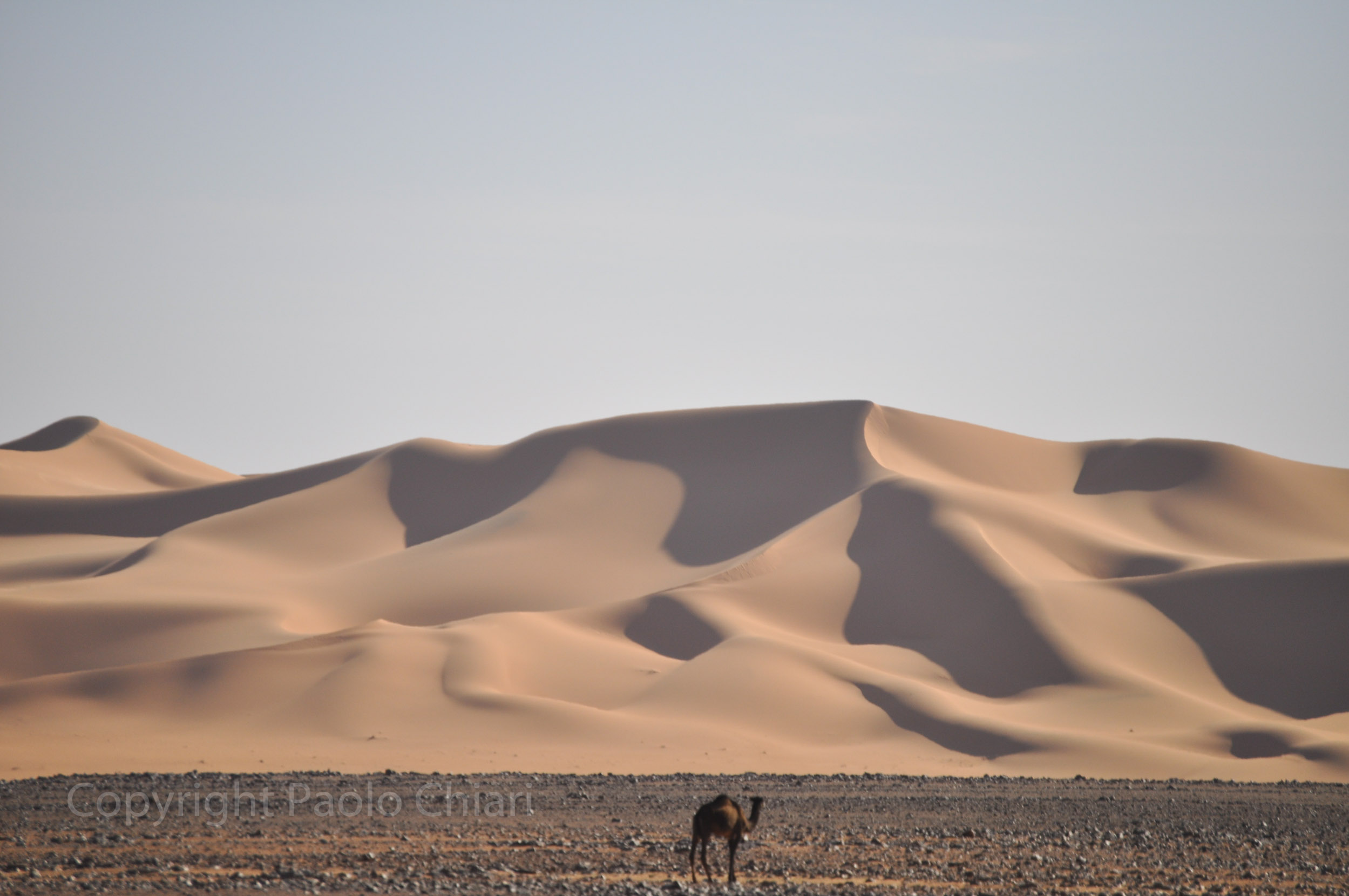 libia2010b_134