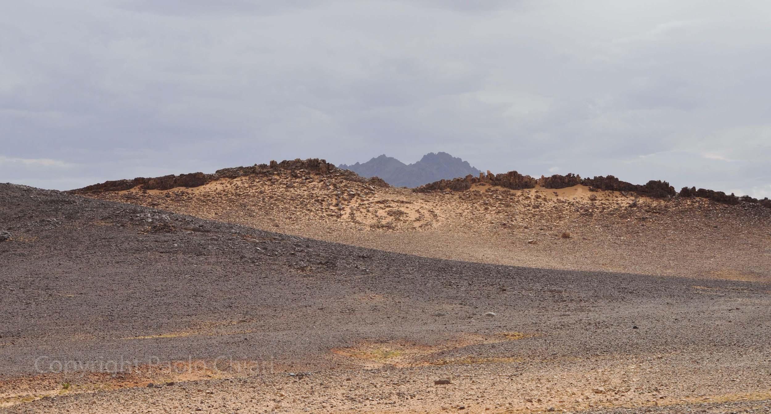 algeria12__492