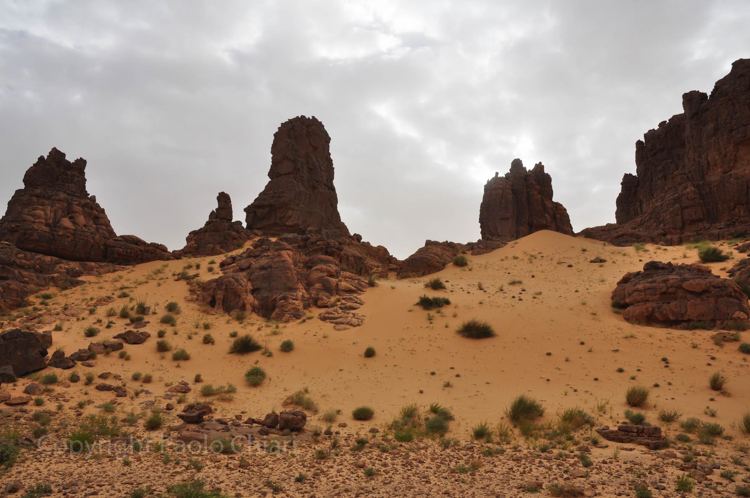 algeria12__1291