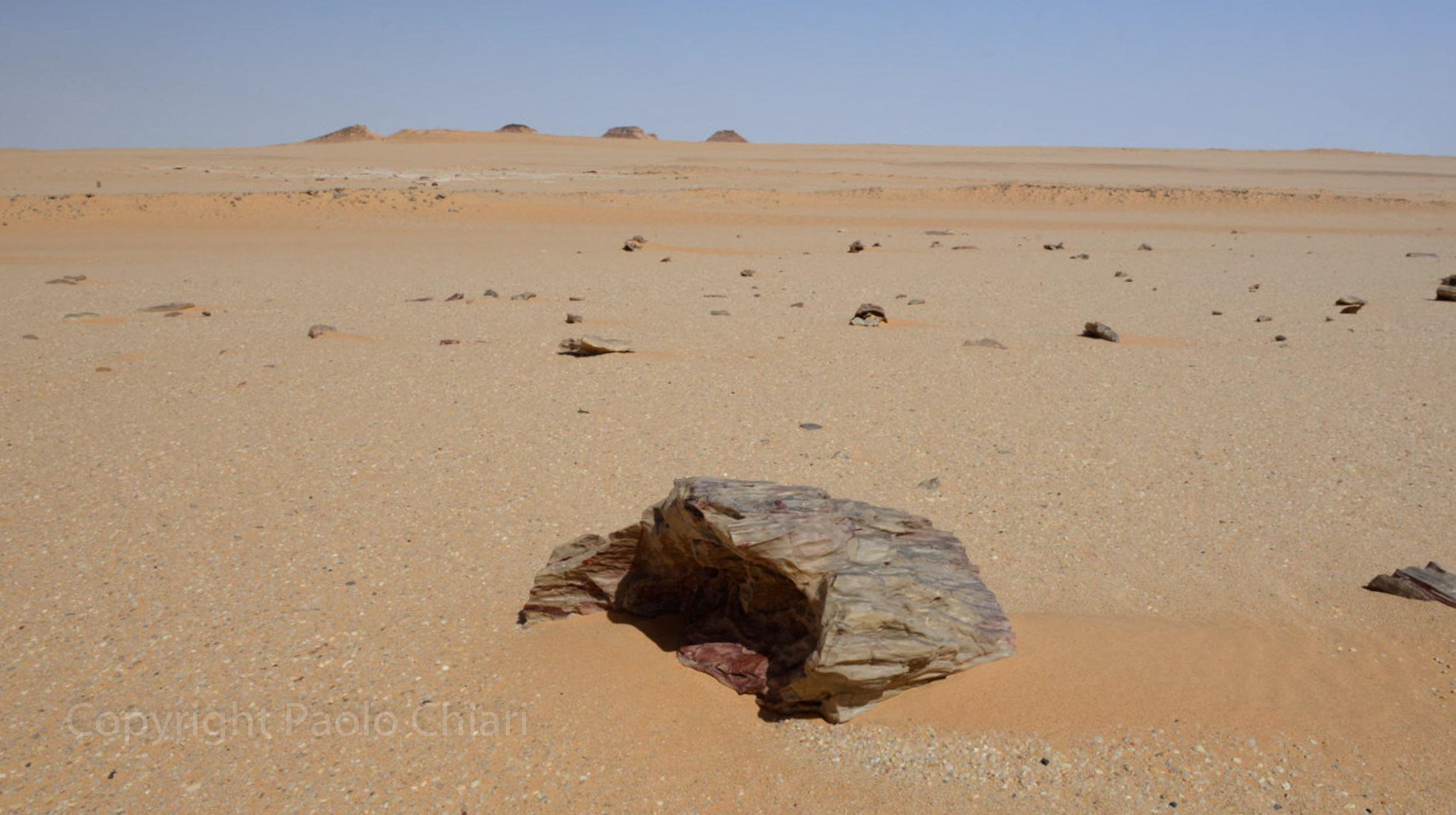 Sudan2013_0698