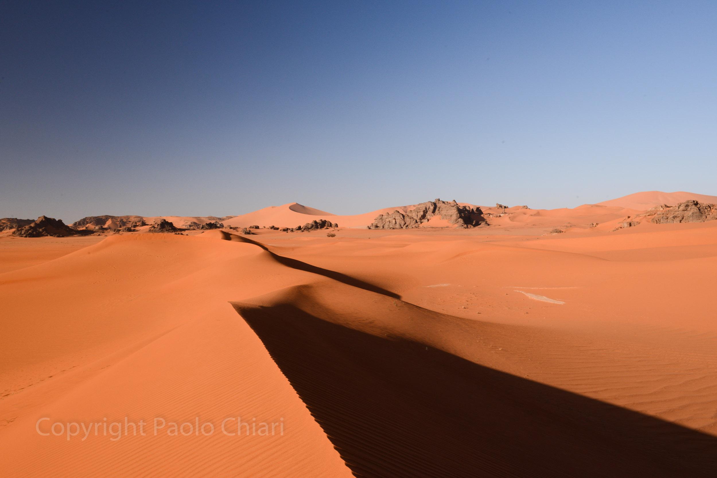 Alger_2014_1083