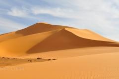 libia2010a_1634