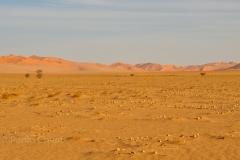 libia2010a_1649