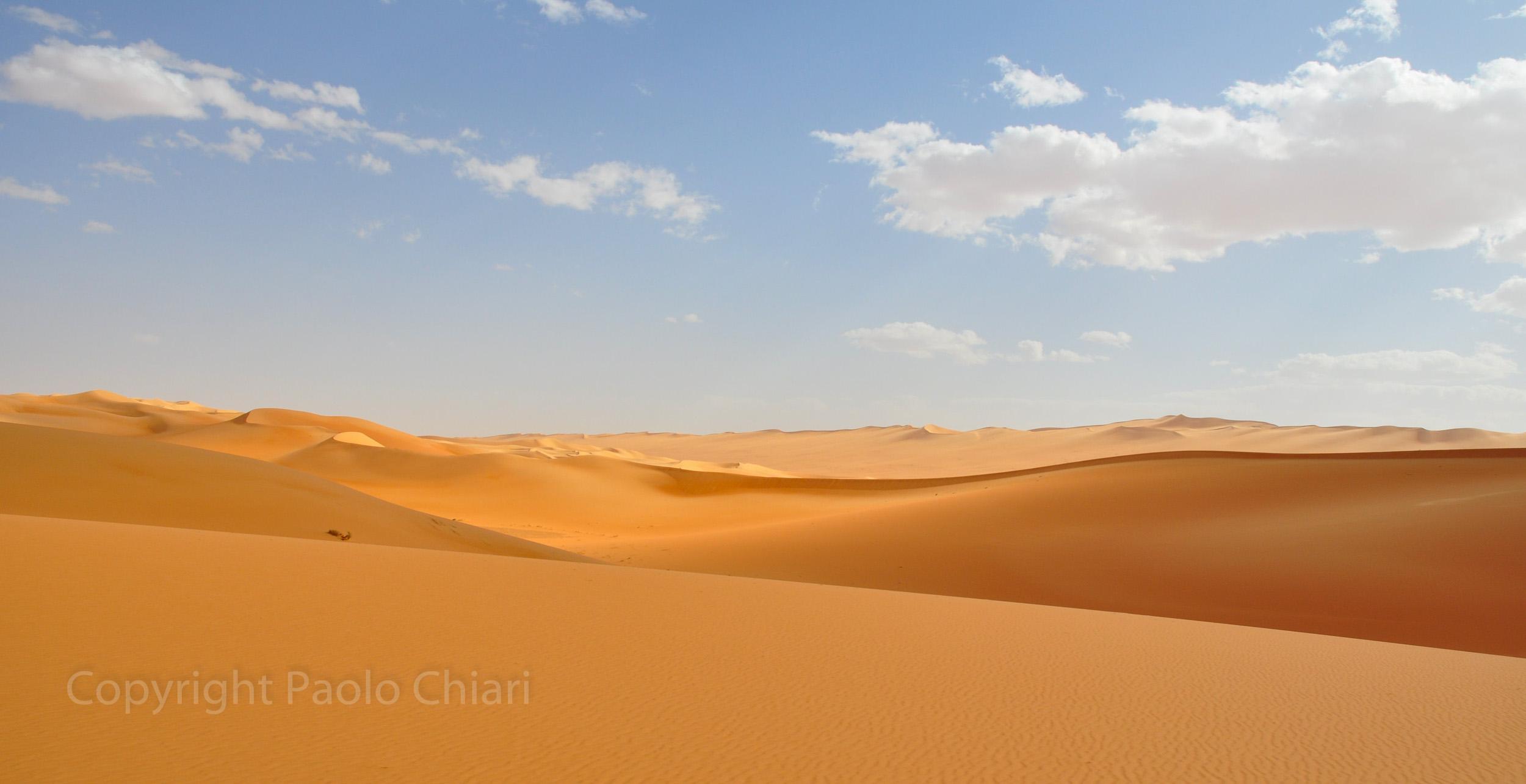 libia2010a_1231