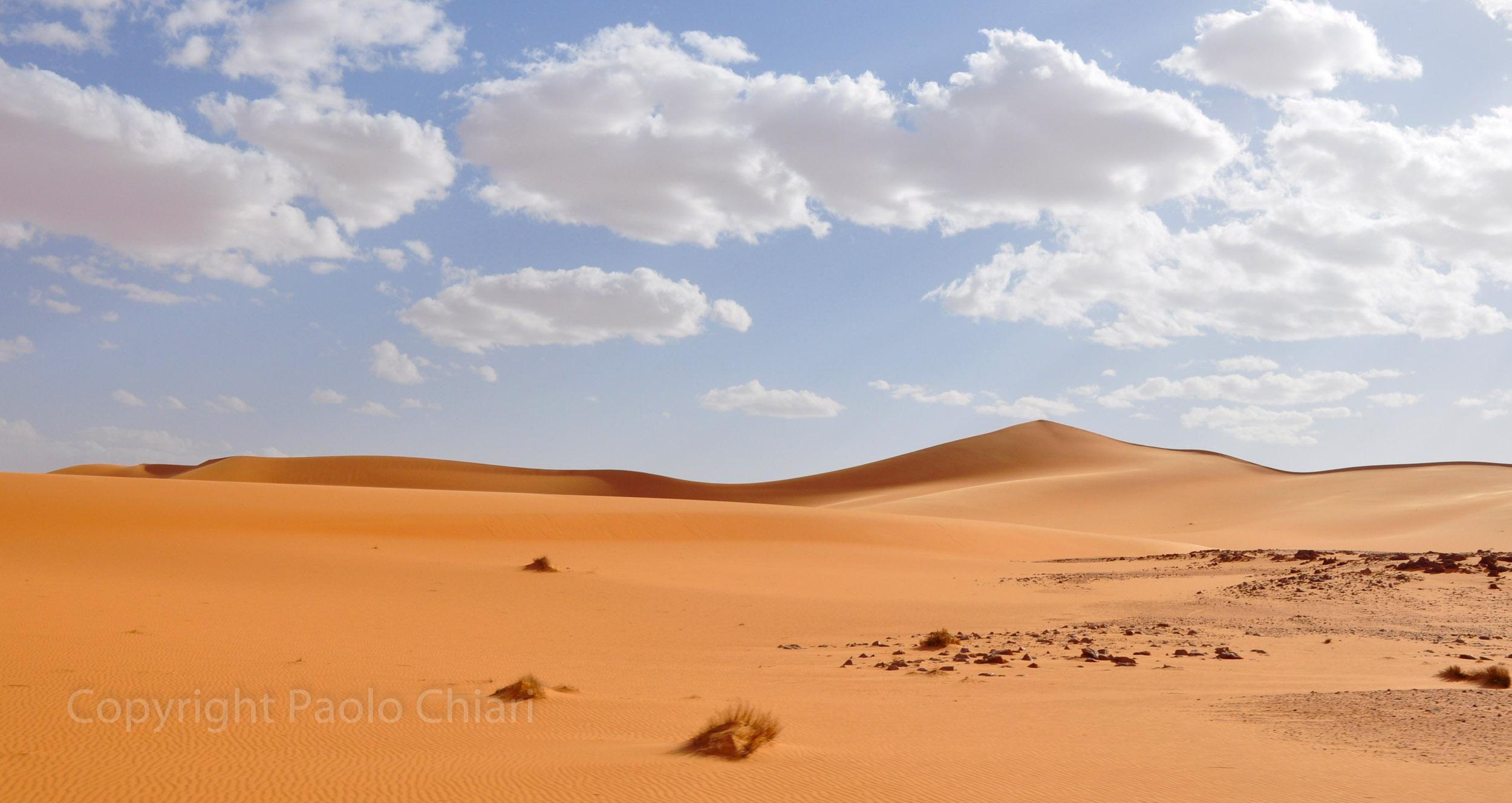 libia2010a_1264
