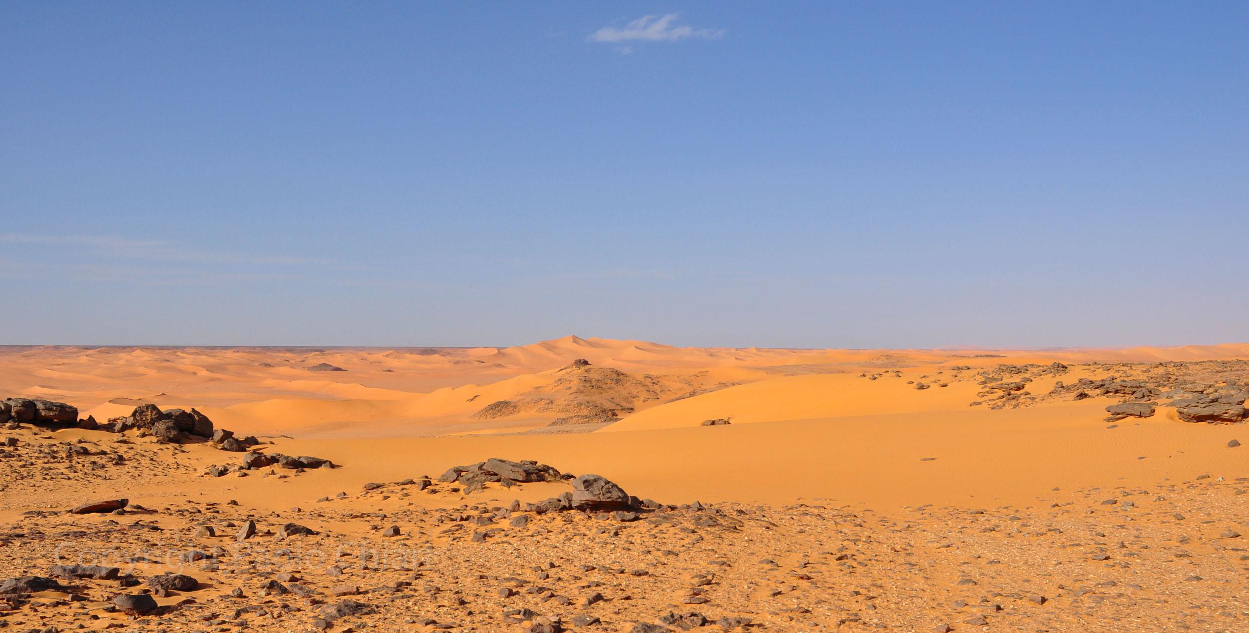 libia2010a_1274