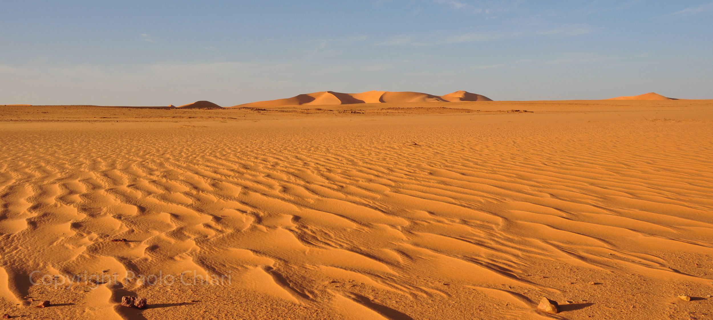libia2010a_1396