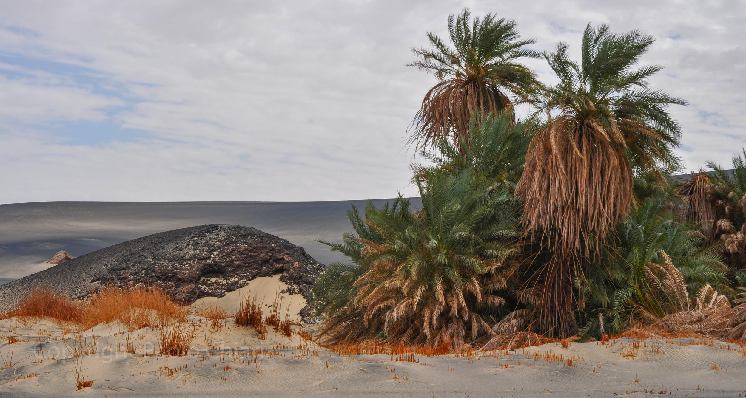 libia2010a_441