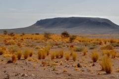 libia2010a_139