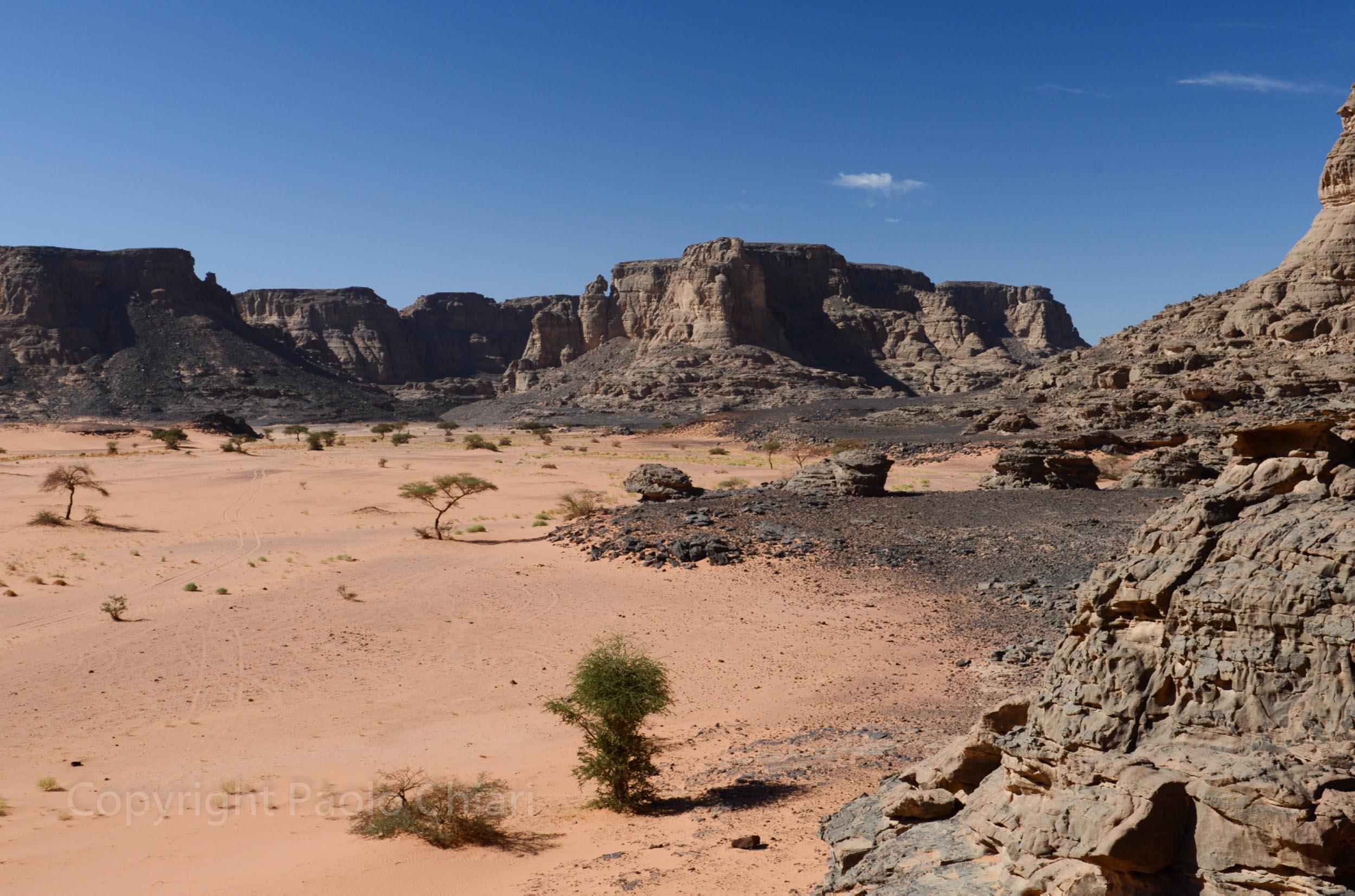 algeria12a__856