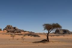 algeria12a__198