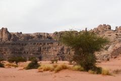 algeria12a__1405
