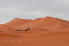 algeria12a__1459