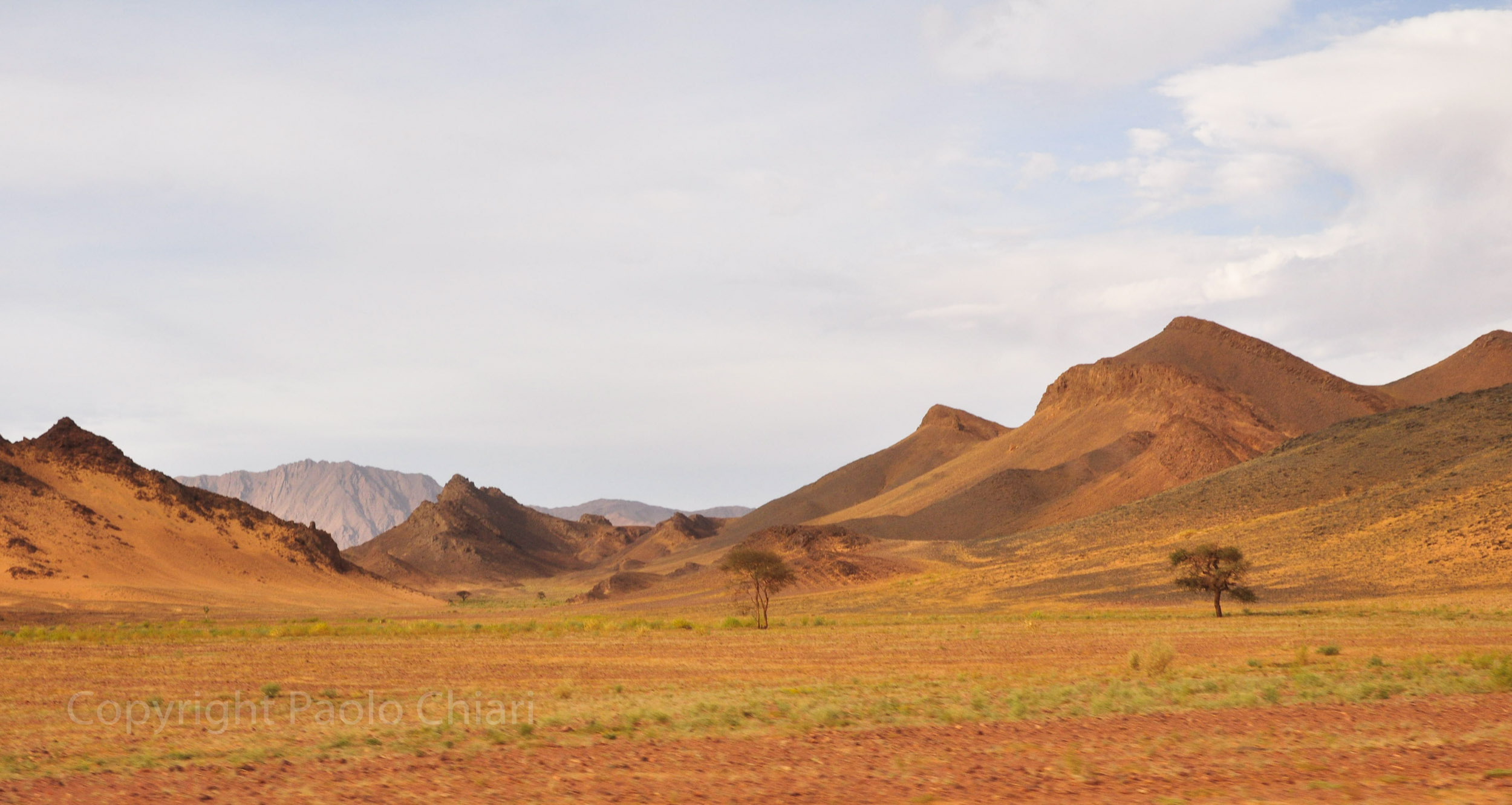 algeria12__1477