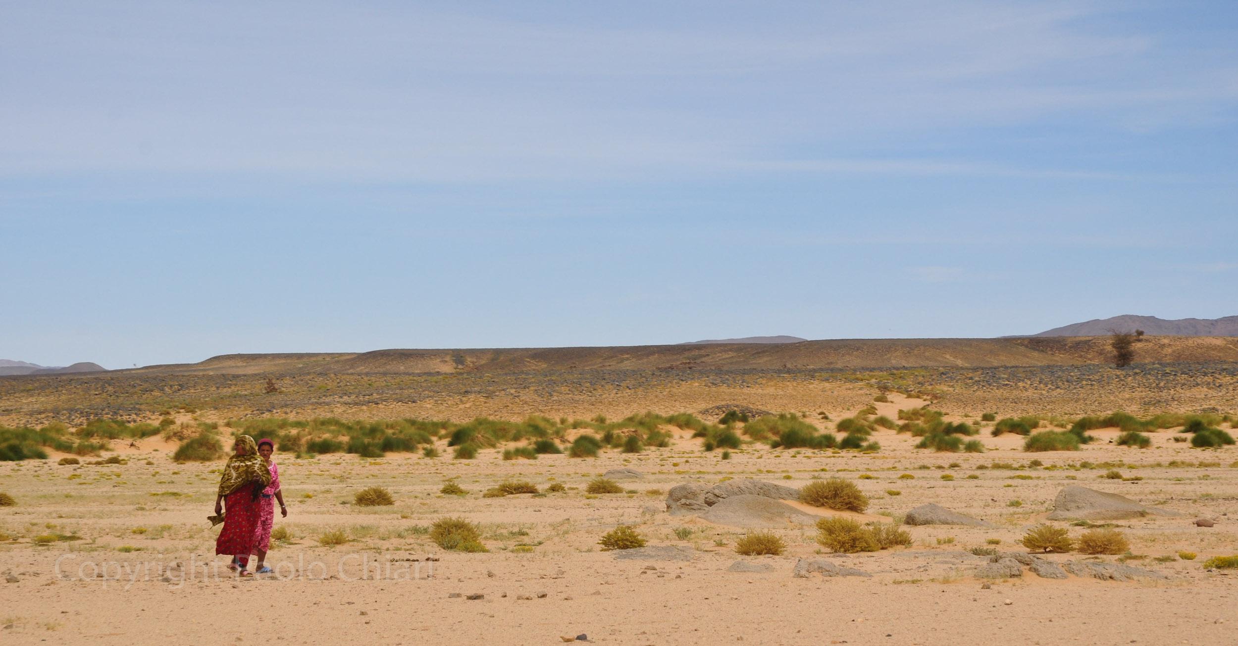 algeria12__1650