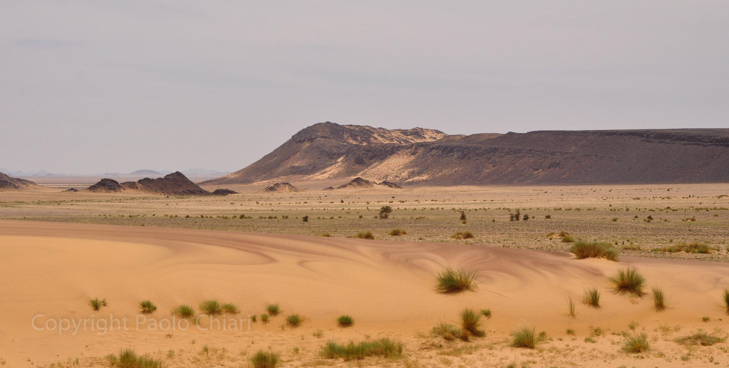 algeria12__1673