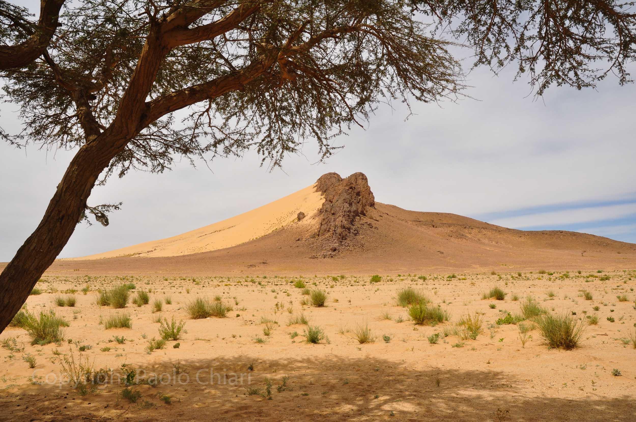 algeria12__1683