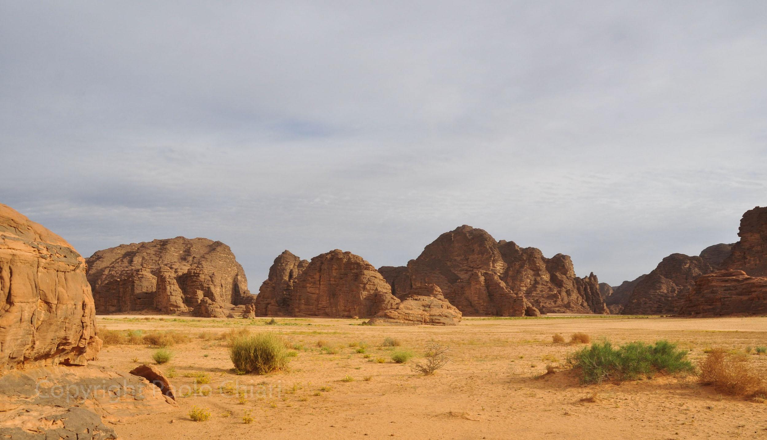 algeria12__1851