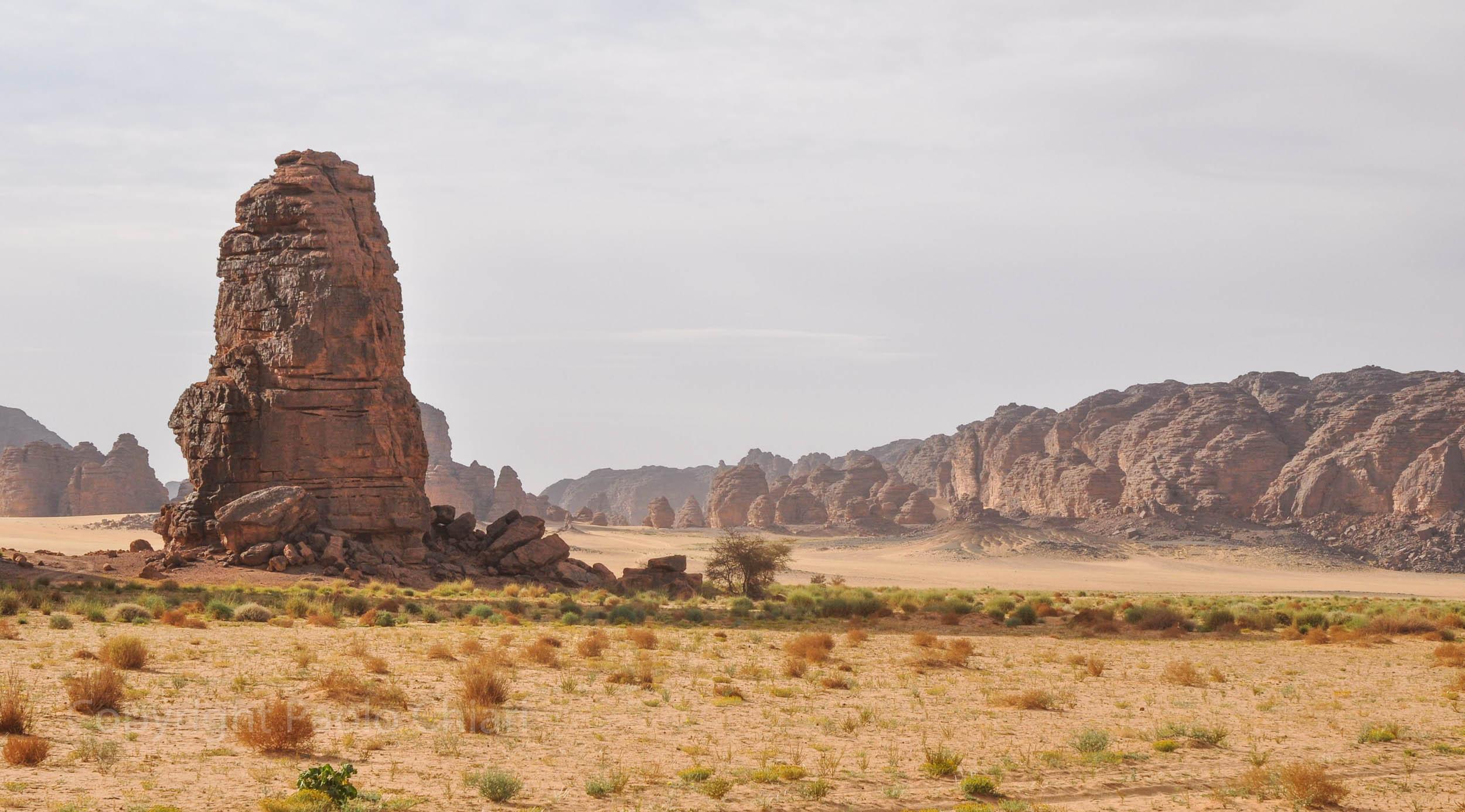 algeria12__1869