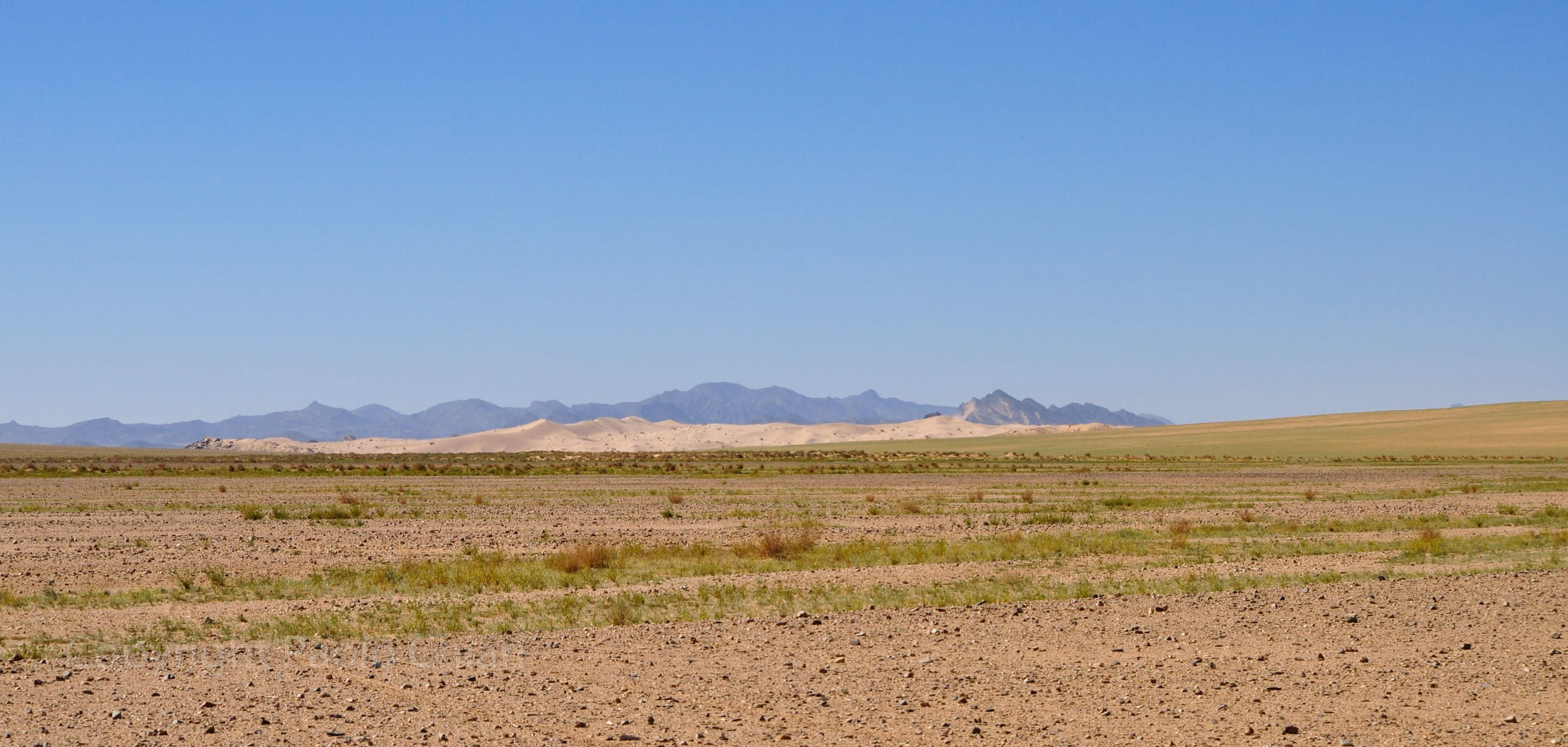 algeria12__661