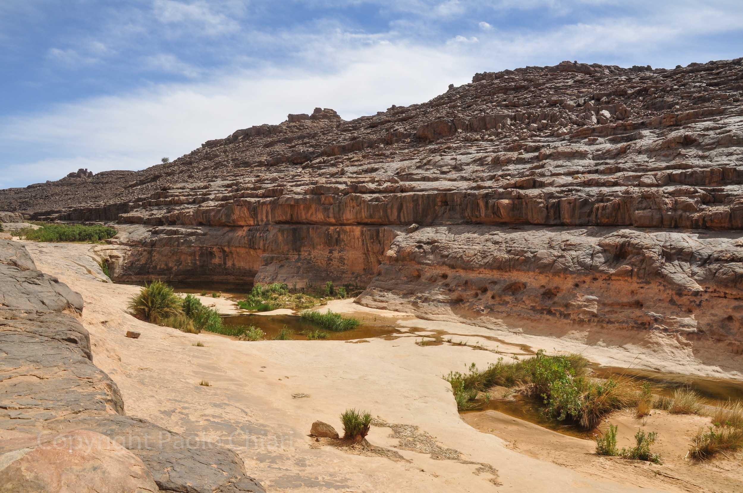algeria12__765