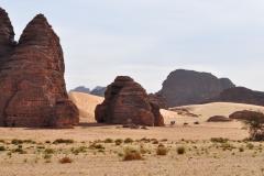 algeria12__459