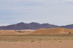 algeria12__507