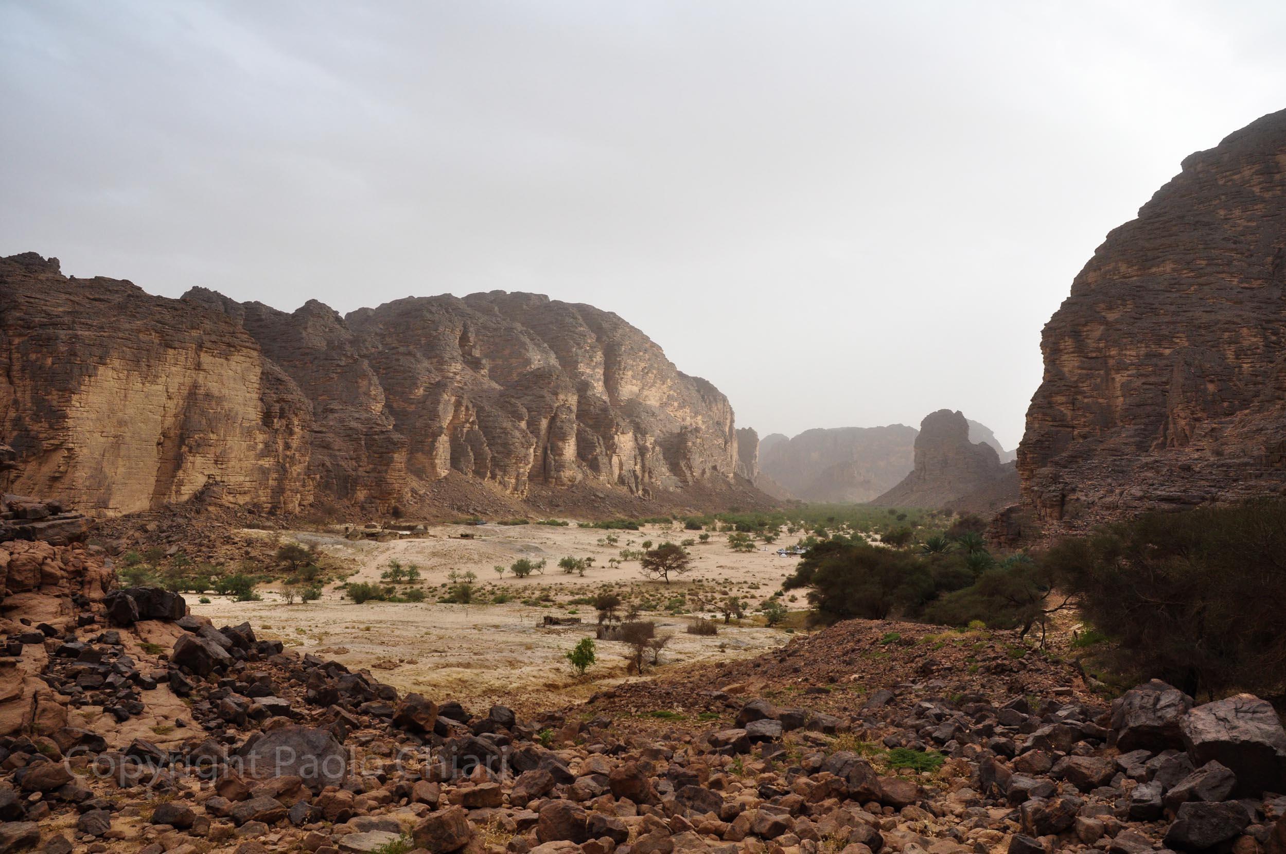 algeria12__226