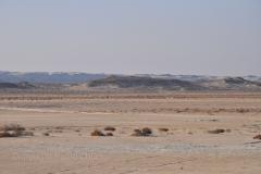 211_Oman13_0574