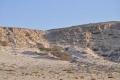 212_Oman13_0577