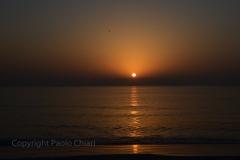 230_Oman13_1455