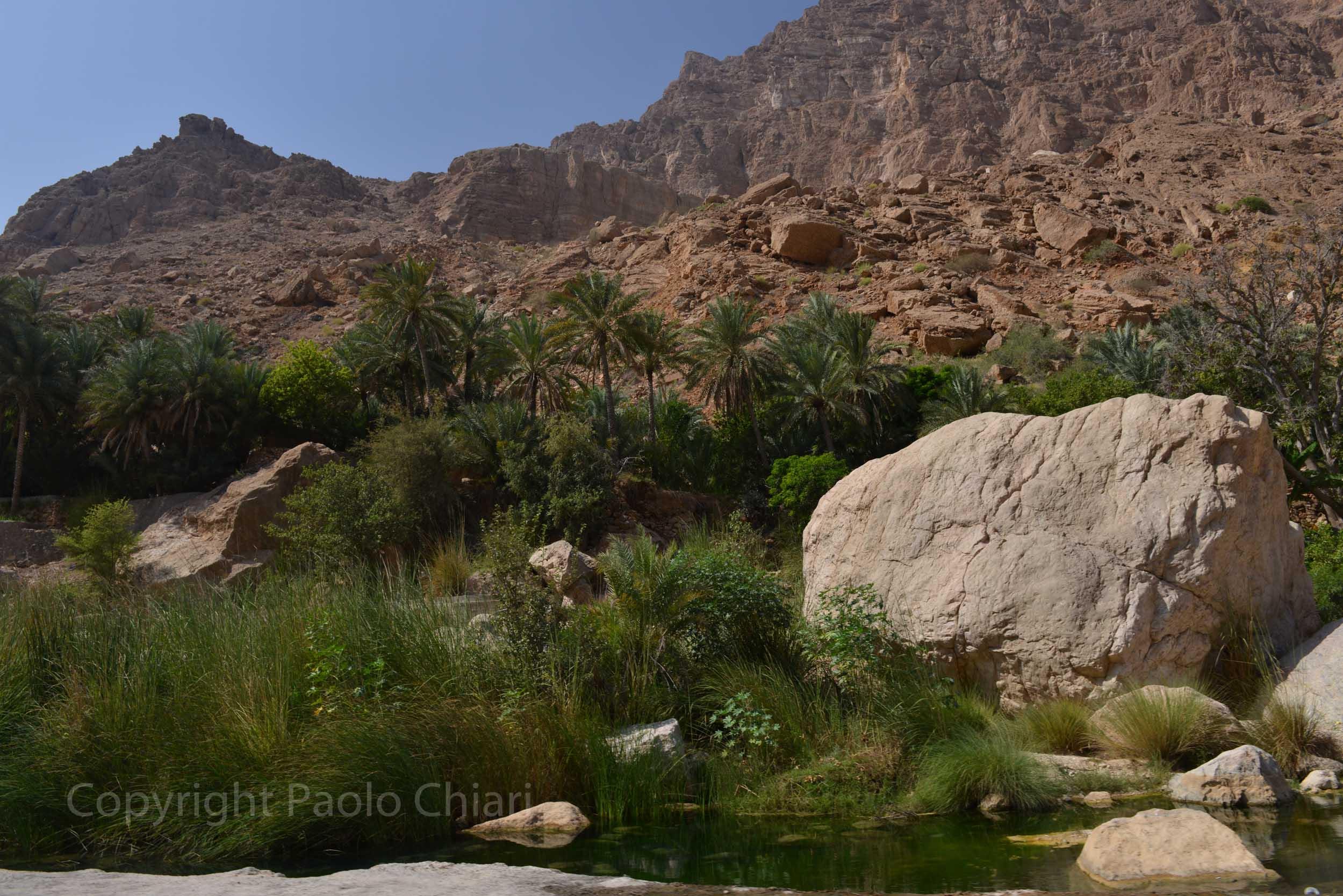408_Oman13_5204
