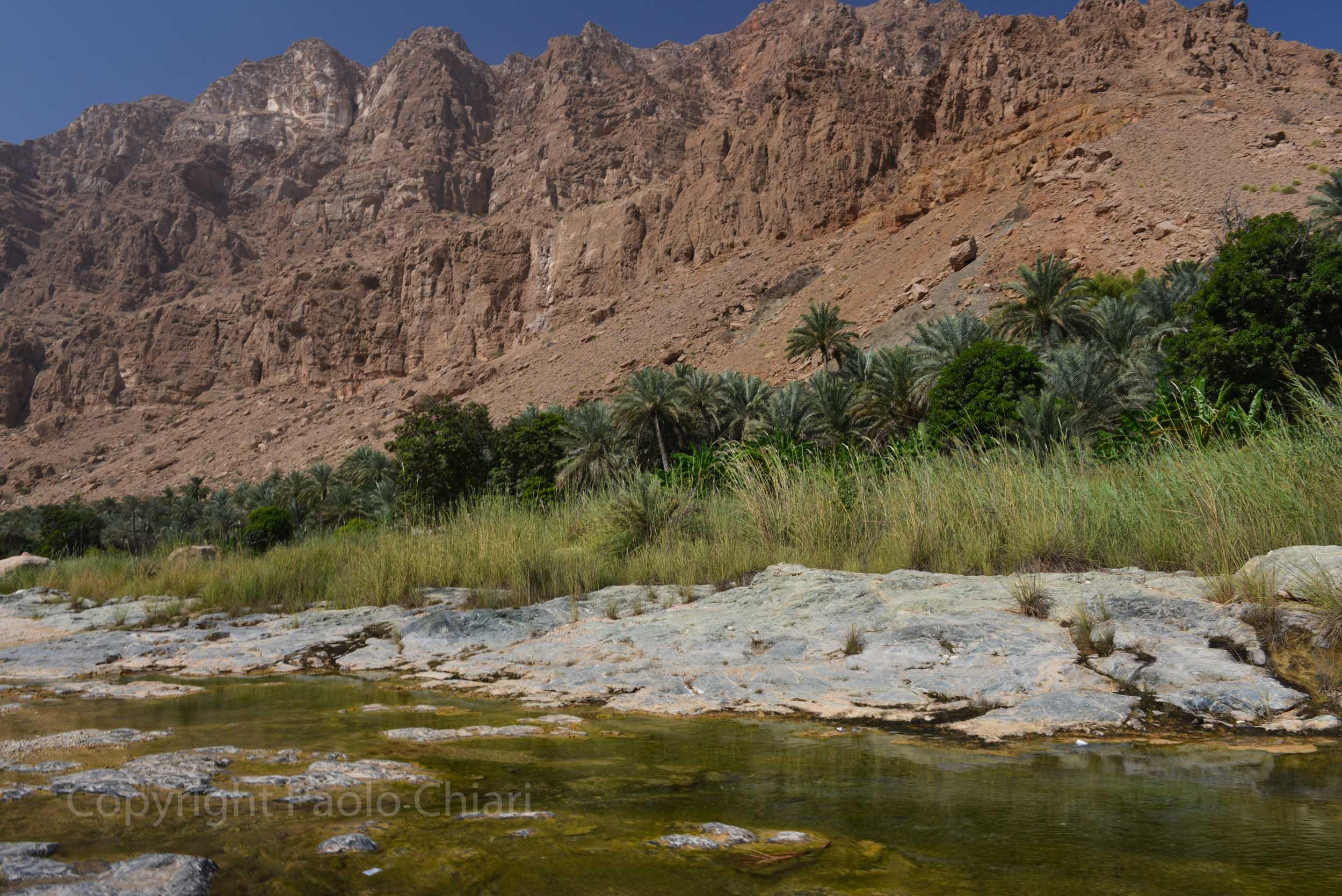 409_Oman13_5206