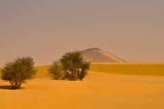 Sudan_0273