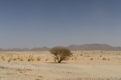 Sudan_0303