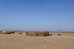 Sudan_0305