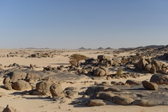 Sudan_0379
