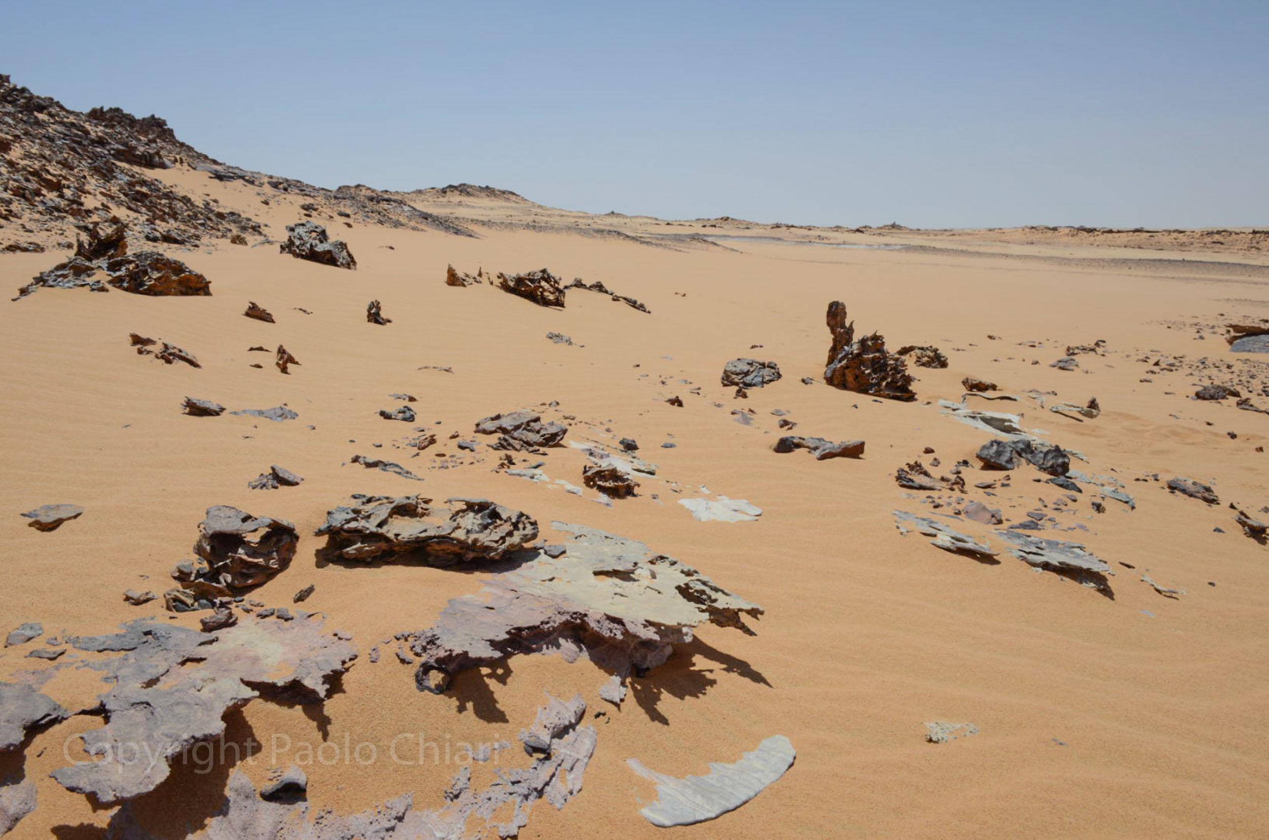 Sudan2013_0671