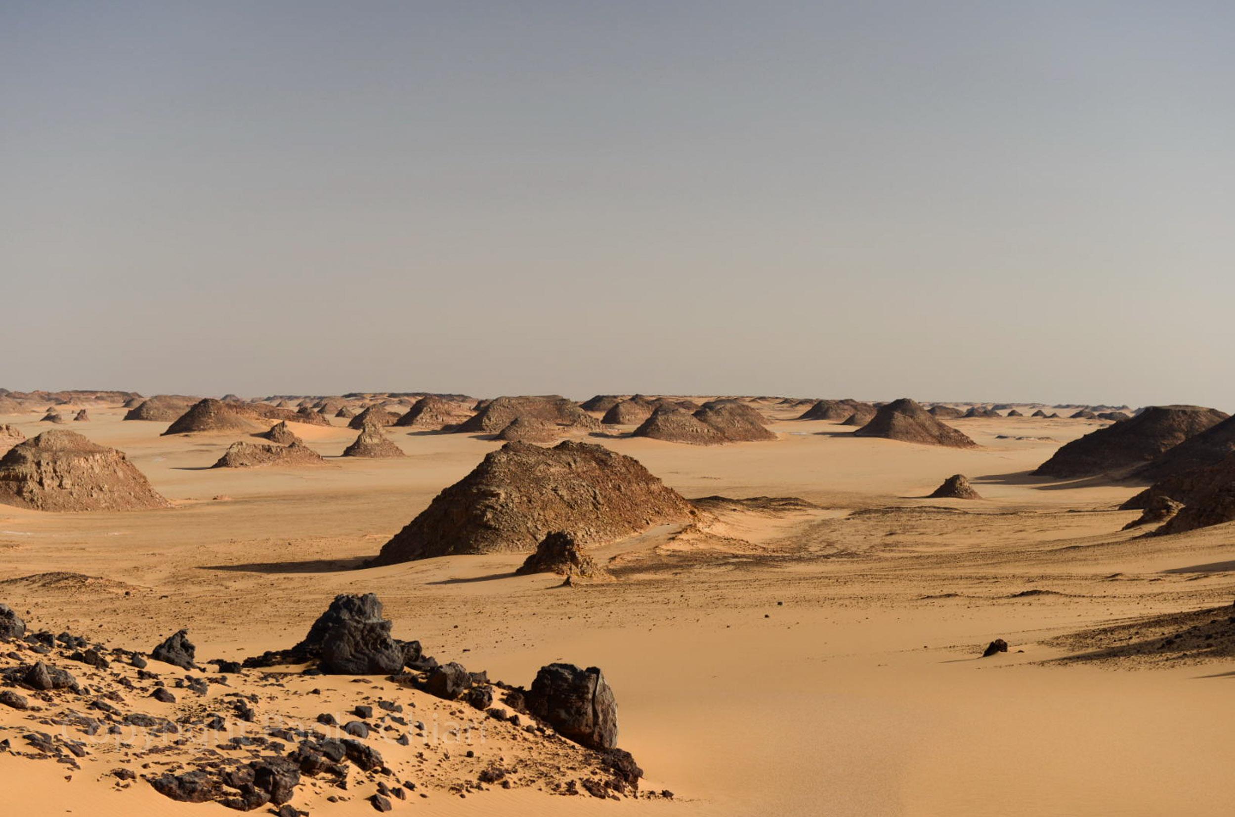 Sudan2013_0732