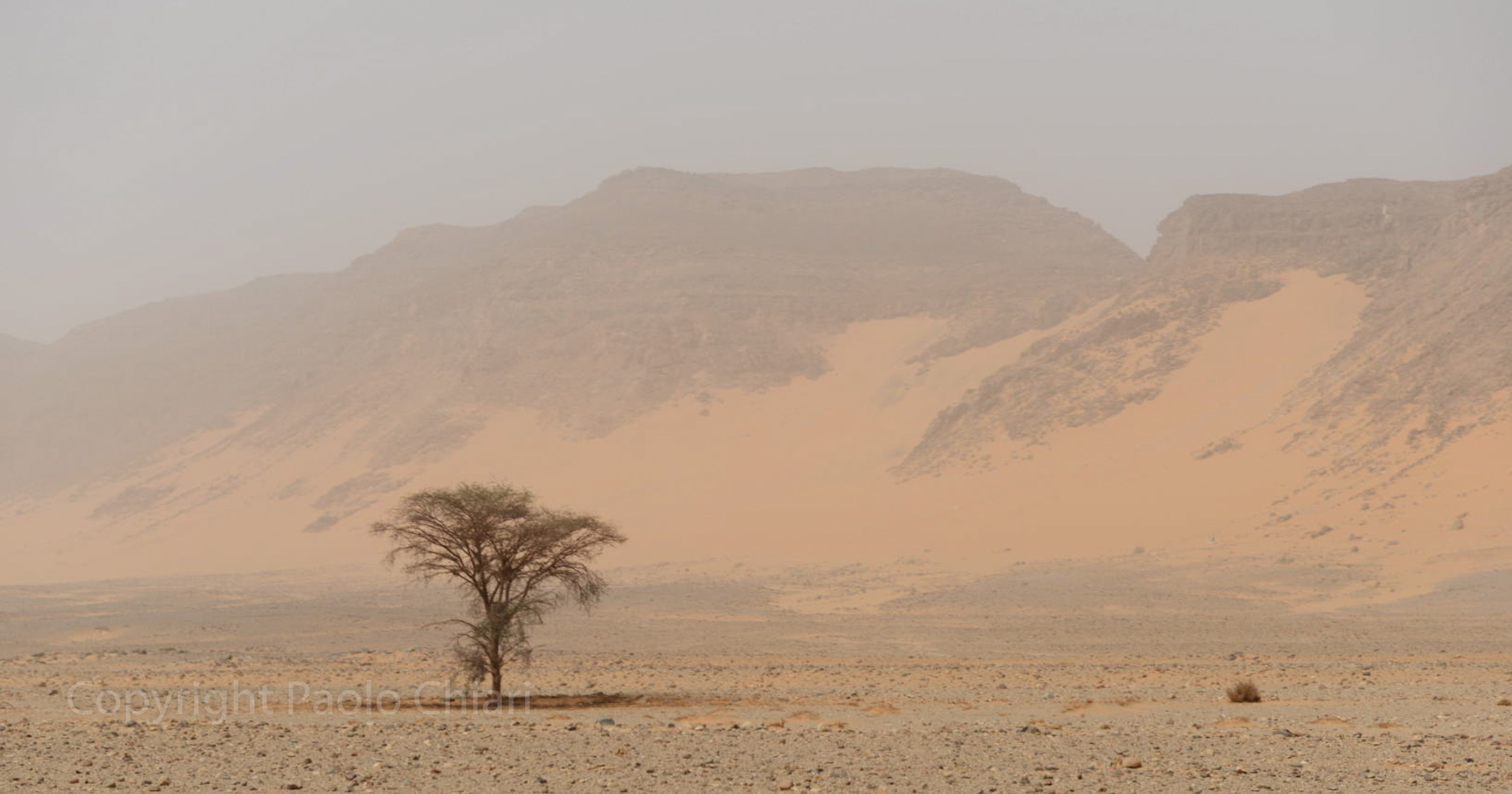 Sudan2013_0959