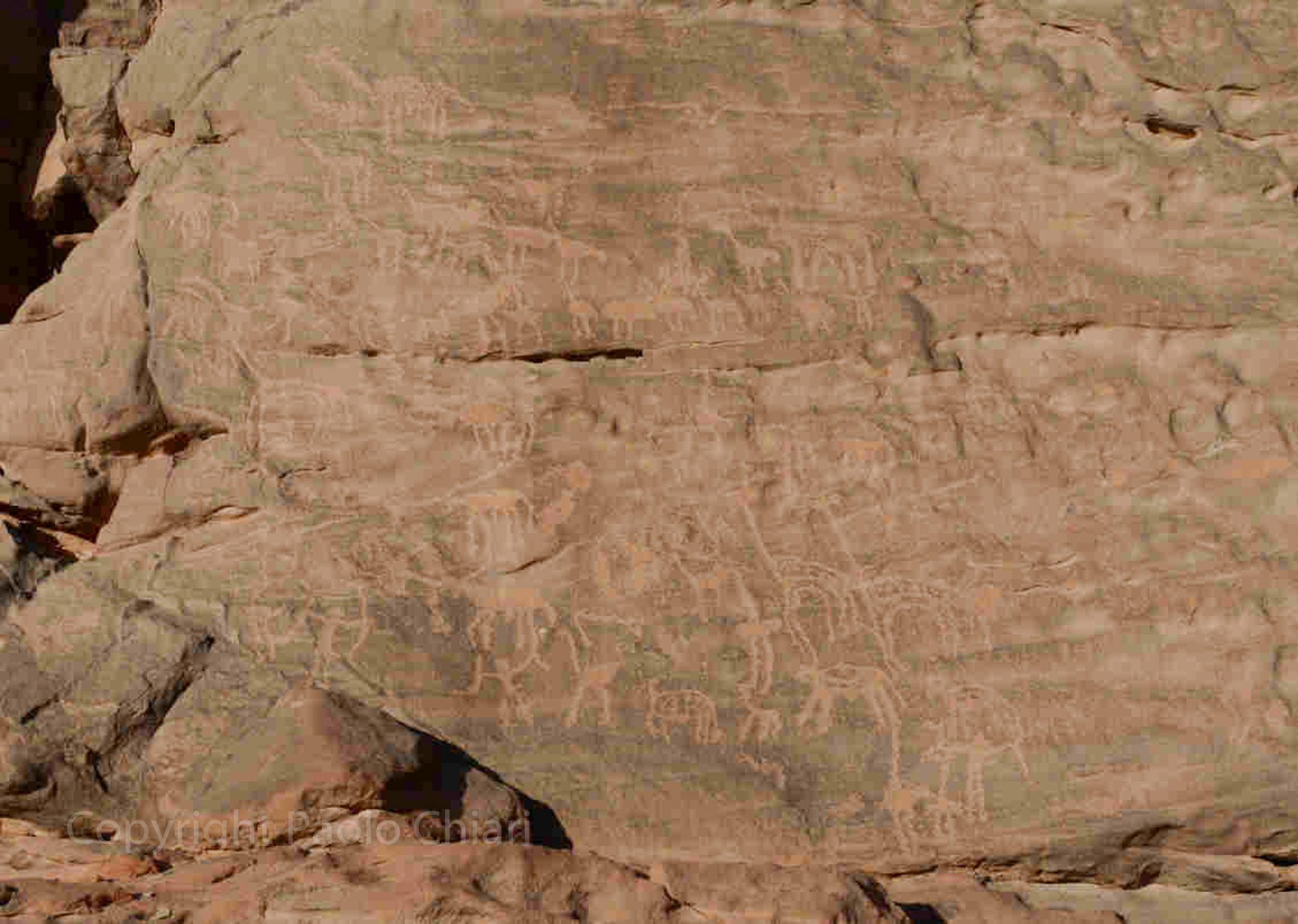 Sudan2013_1074