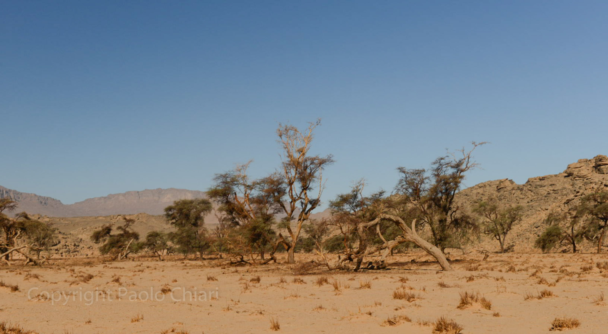 Sudan2013_1142