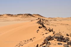 Sudan_0689