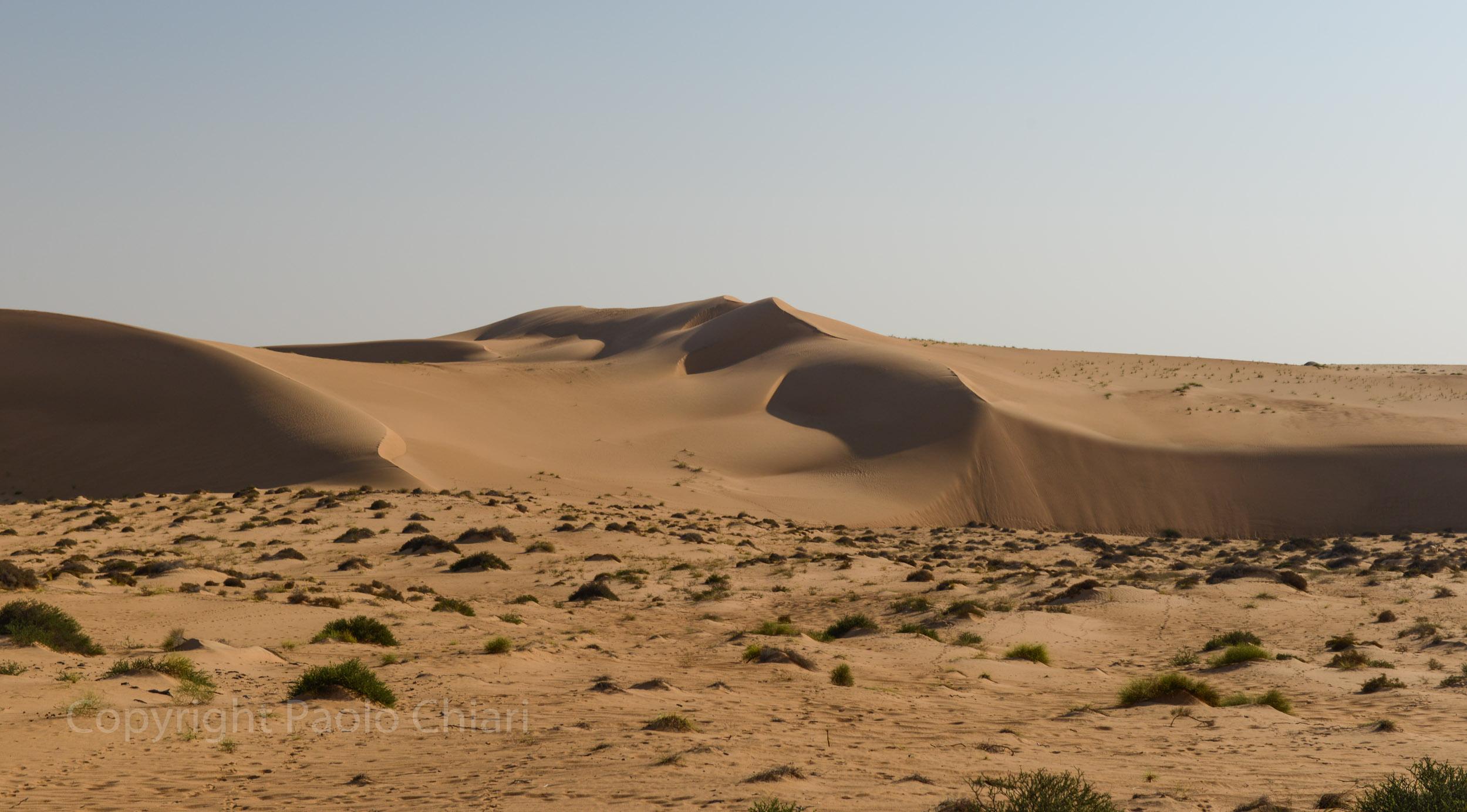 124_Oman13_0884