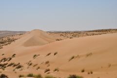 117_Oman13_0233