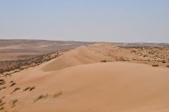 118_Oman13_0235