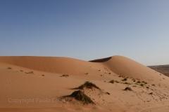 75_Oman13_0824