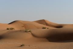 80_Oman13_0831