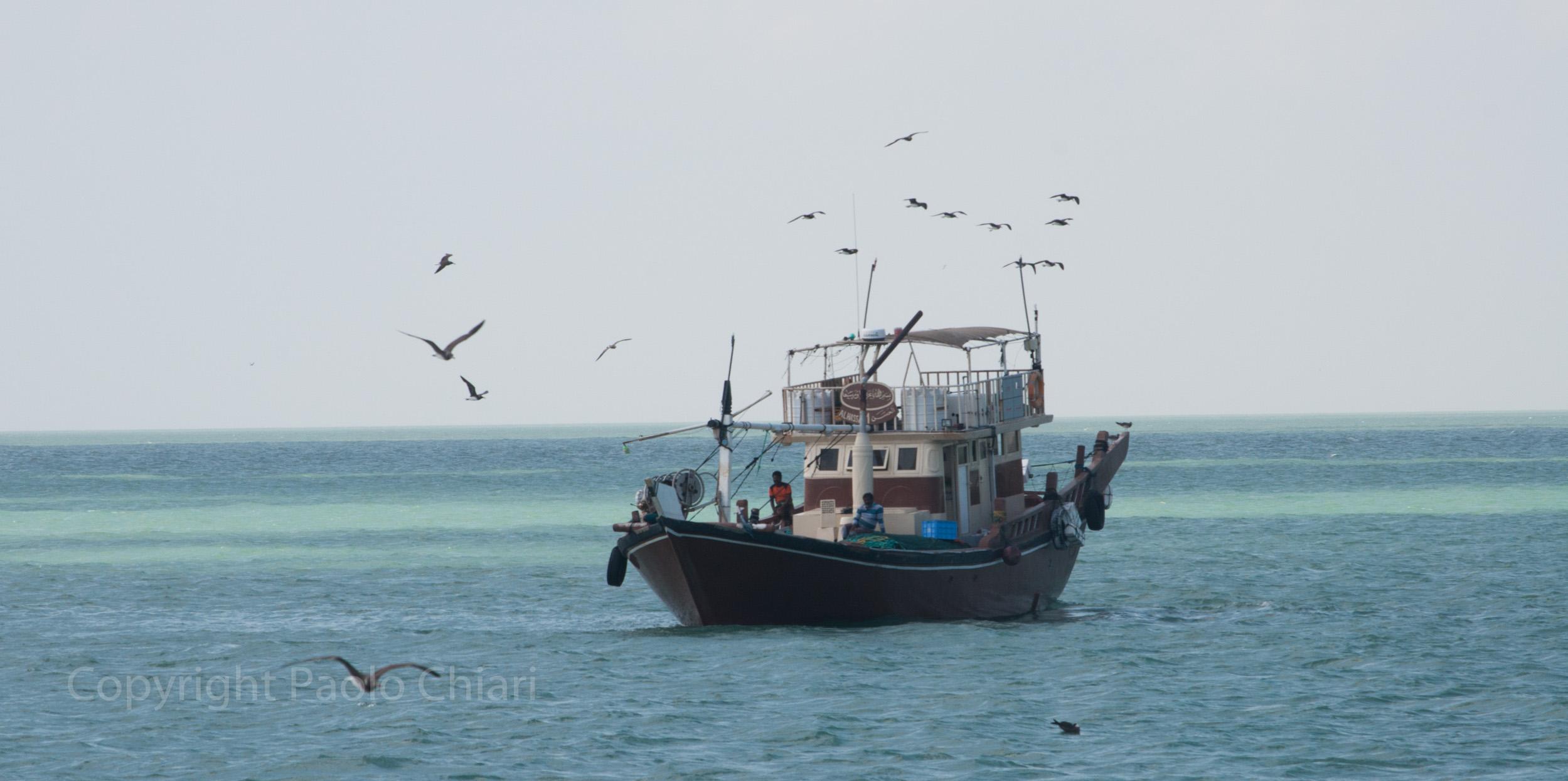 Oman14_678